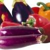 Баклажани в теплиці: з чим садити - з огірками, помідорами або перцем?