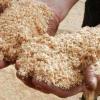 Біотехнологія природного землеробства і її можливості і способи організації