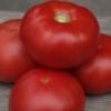 Характеристики та опис сорту томатів «ля ля фа» f1: вирощуємо і їмо з задоволенням