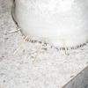 Хитромудра пастка для мурашок
