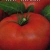 Імператор городу - сорт томата «петро перший» f1: опис, фото і особливості вирощування
