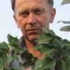 Підсумки сезону 2009 року в саду ю. А. Лотенкова (челябінськ) і оцінка якості сортів