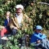Підсумки зими 2010 року в саду л. І. Васильєва, чебоксари