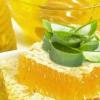 Як можна приготувати ліки з алое і меду?