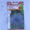 Як підготувати до зими овсяницу сизу?