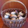 Як правильно сушити гриби на зиму