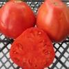 Як виростити томат «серце буйвола»? Опис, характеристика і фото середньостиглої сорту