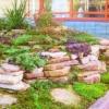 Кам`янисті сади - спосіб організації садового дизайну