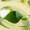 Квас з березового соку: два простих рецепта