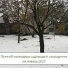 Місячний календар садівника-городника на січень 2017 року