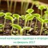 Місячний посівний календар садівника-городника на лютий 2017