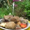 Міні-водойма для саду своїми руками за півгодини: майстер-клас
