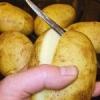 Чи можна різати бульби картоплі