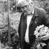 Нечіпурнов макс максимович, садівник-опитнікамі з челябінська, пітомніковод