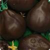 Опис переваг і недоліків, все характеристики сорту томату «чорна груша»