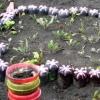 Оригінальні садові прикраси для економних