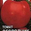 Відмінний сорт помідорів для вирощування в теплицях - томат «городник» фото і опис