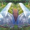 Парники: етапи будівництва і особливості вирощування в ньому