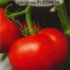 Перспективний гібрид російської селекції - томат «стреза»
