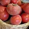 Помідор і персик в одному флаконі! Опис підвидів томата: жовтий, червоний і рожевий f1