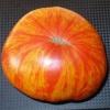 Помідори з надзвичайною забарвленням, родом з сша - «король краси» - опис сорту томату