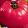 Прекрасний зовні і смачний всередині - томат «малиновий дзвін»: опис сорту і фото
