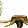 Розмноження рослин різними способами