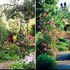 Садові металеві арки для витких рослин своїми руками.