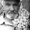Синіцин олександр семенович, садівник-опитнікамі з челябінська, перший в челябінську