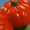 Солодкість на столі - томат «добриня микитич»: способи вирощування і опис сорту
