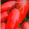 Сорт томата «локомотив» - простий в догляді і смачний томат, його опис і характеристики