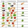 Сумісність культур: чи можна садити в одній теплиці огірки і помідори і перці?