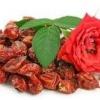 Сушка шипшини в духовці в домашніх умовах гарантовано збереже корисні властивості ягоди