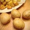Універсальний сорт картоплі гала: врожайність, невибагливість, тривале зберігання