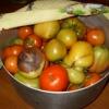 Прискорення дозрівання томатів
