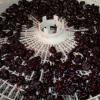 В`ялена вишня: як в`ялити в духовці і електросушарці?