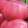 Смачний і стійкий до захворювань томат - сорт томата «малиновий велетень»