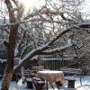 Зимові роботи в саду